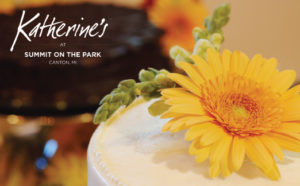KATHERINE'S AT SUMMIT ON THE PARK AD IN DETROIT WEDDING DAY